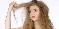علاج الشعر التالف 240x120 - طريقة دواء الشعر الفاسد