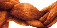 عمل شامبو طبيعي لتكثيف الشعر 240x120 - كيفية عمل شامبو طبيعي لتكثيف الشعر