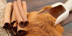 القرفة الهندية 240x120 - فوائد نبات القرفة لصحة الإنسان