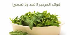 safe imagقثقe.php  240x120 - فوائد نبات الجرجير وكيفية الاستفادة من نبات الجرجير
