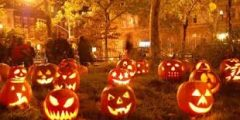 download 15 240x120 - ما هو عيد الهالوين