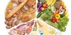 التغذية المتوازنة 240x120 - اهمية التغذية المتوازنة