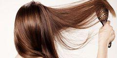 1549113002 977 156378  240x120 - طريقه التخلص من تساقط الشعر