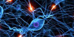 علاج ضعف الأعصاب