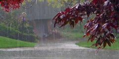 أدعية للريح ونزول المطر