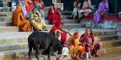 1 81 240x120 - تعريف الديانة الهندوسية