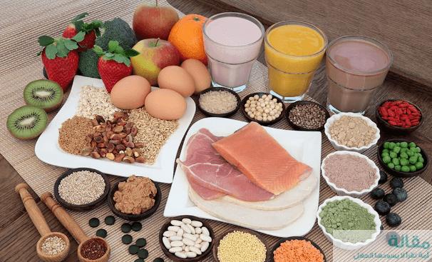 2 6 - اهمية البروتين وإنتاج الطاقة
