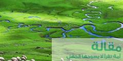 1 17 240x120 - خريطة مرتفعات بارشمبا واحداثياتها