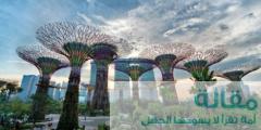 14 3 240x120 - المزارات السياحية في مدينة سنغافورة