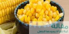 اهمية الذرة المسلوقة