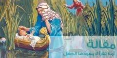 موسى عليه السلام 240x120 - معلومات زوجة موسى عليه السلام