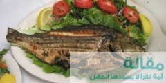 نصيحة السمك يساعدك علي التخلص من التوتر
