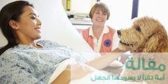1516422 240x120 - سرطان الرئة وعلاقته بالكلاب