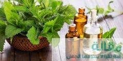 ما هي الإستخدامات العلاجية للنعناع ؟